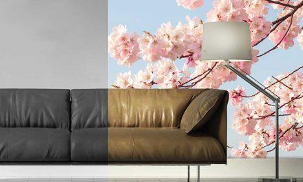 Sabur adds Design2Wall wallpaper range