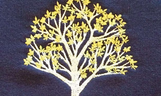 Telling it like it is: single-head embroidery machines